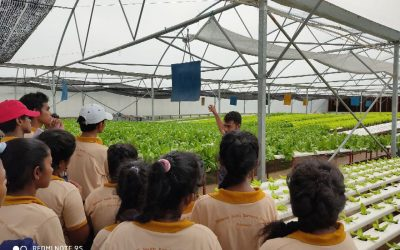 Next generation of Agriculturalists learn about sustainability at The Lanka Salad Company